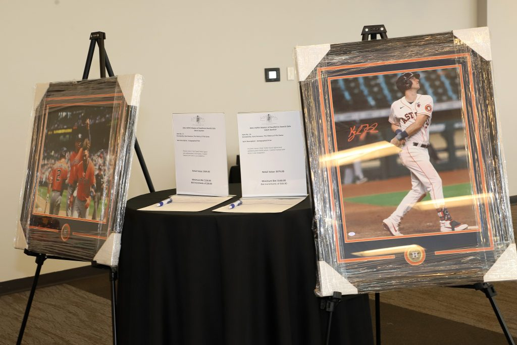 Silent Auction items (Photo by Barfield Photography)